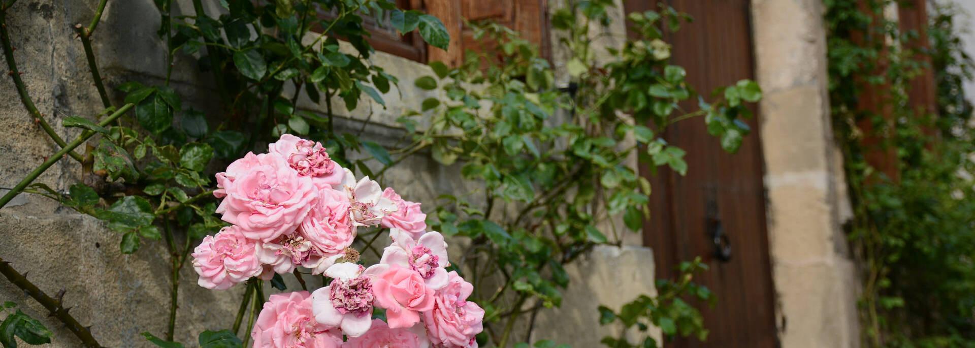 The medieval street flowery